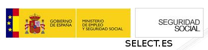 cita previa seguridad social por internet