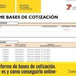 Acceder al informe de bases de cotización de un trabajador